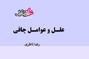 مقاله علل و عوامل چاقی نوشته رضا ناظری